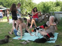 Sommerfest  Suche Herrchen 067