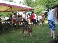 Sommerfest  Suche Herrchen 069