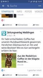 Erfolgsgeschichte :: Coffee der klügste Hund aus dem Rems-Murr-Kreis