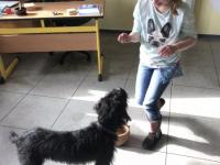Frieda (6)