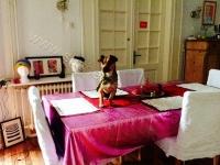 yuki auf Tisch