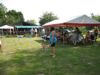 Sommerfest  Suche Herrchen 038