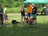 Sommerfest  Suche Herrchen 058