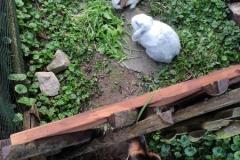 Emma-und-Kaninchen2