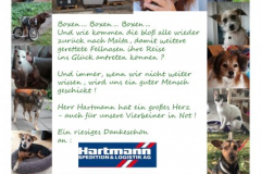 2-Danke-HerrnHartmann