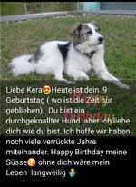 Erfolgsgeschichte :: Kera