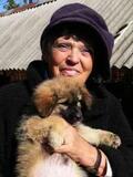 Nachruf auf Ute Langenkamp Tierhilfe Hoffnung